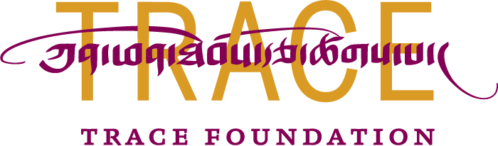 Trace Foundation